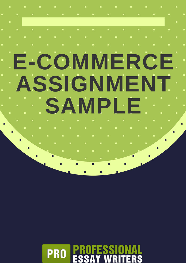 e commerce assignment sample