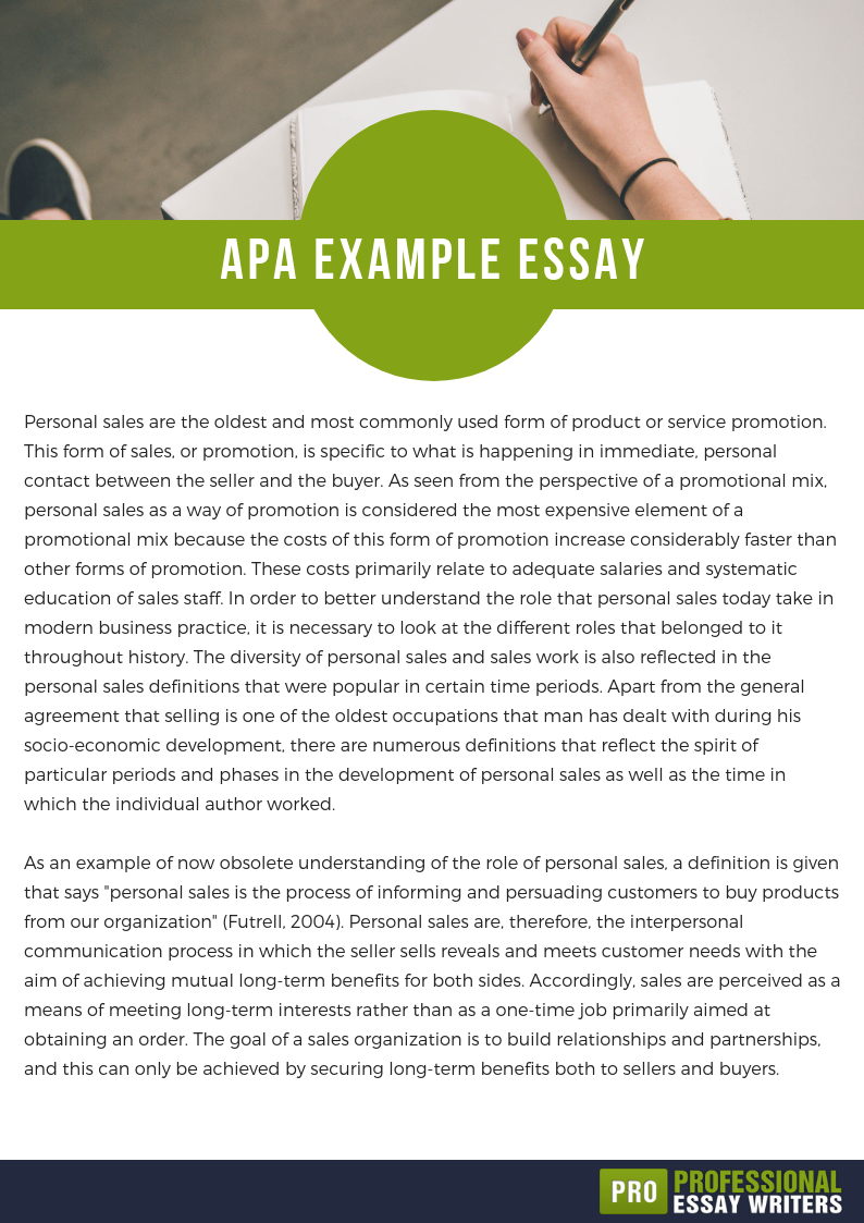 apa example essay
