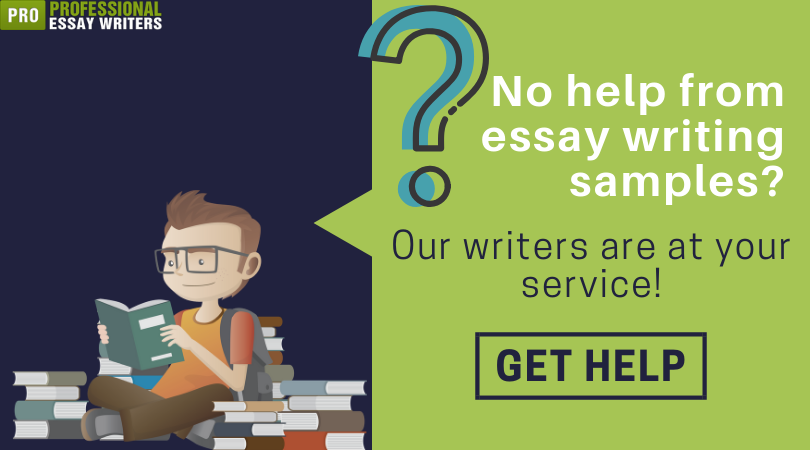 best essay writing samples